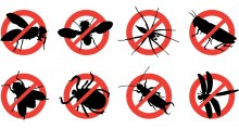 Treat Bug Bites Checklist