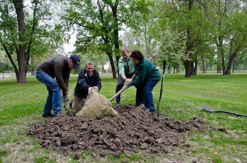 Tree Planting Checklist