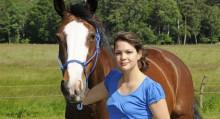 Buying Horse Checklist