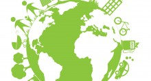 Environmental Safety Checklist